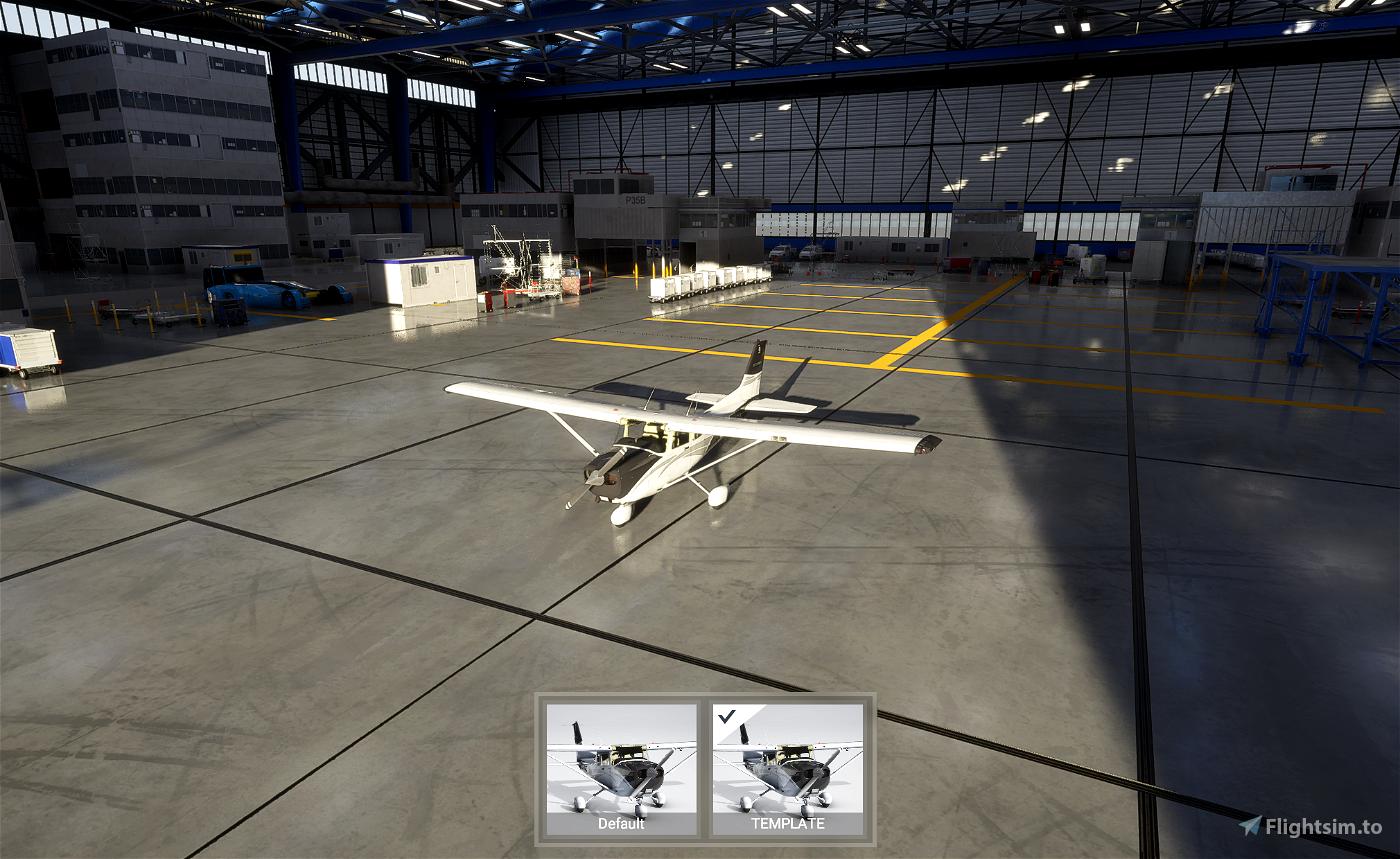 Cessna 172 (G1000) paintkit Microsoft Flight Simulator