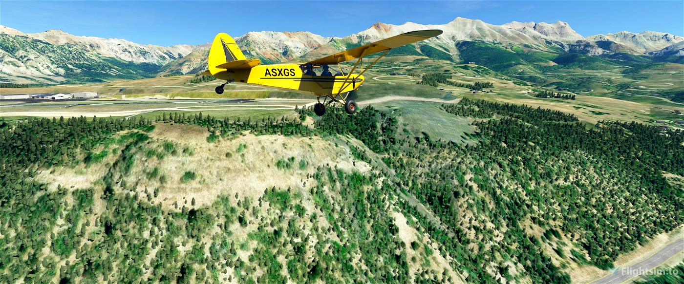 Tree Height Modification for MFS2020 (shorter, realistic trees)  Image Flight Simulator 2020