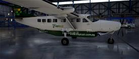 Papua New Guinea (PNG) Tropicair Caravan 208 Microsoft Flight Simulator