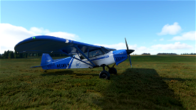 X-Cub Neofly Classic Image Flight Simulator 2020