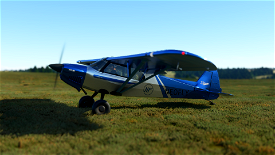 X-Cub Neofly Image Flight Simulator 2020