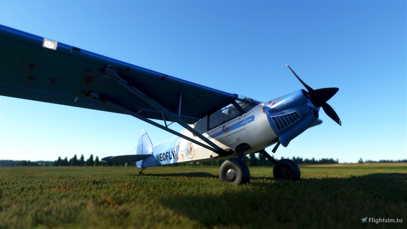 X-Cub Neofly Rusty