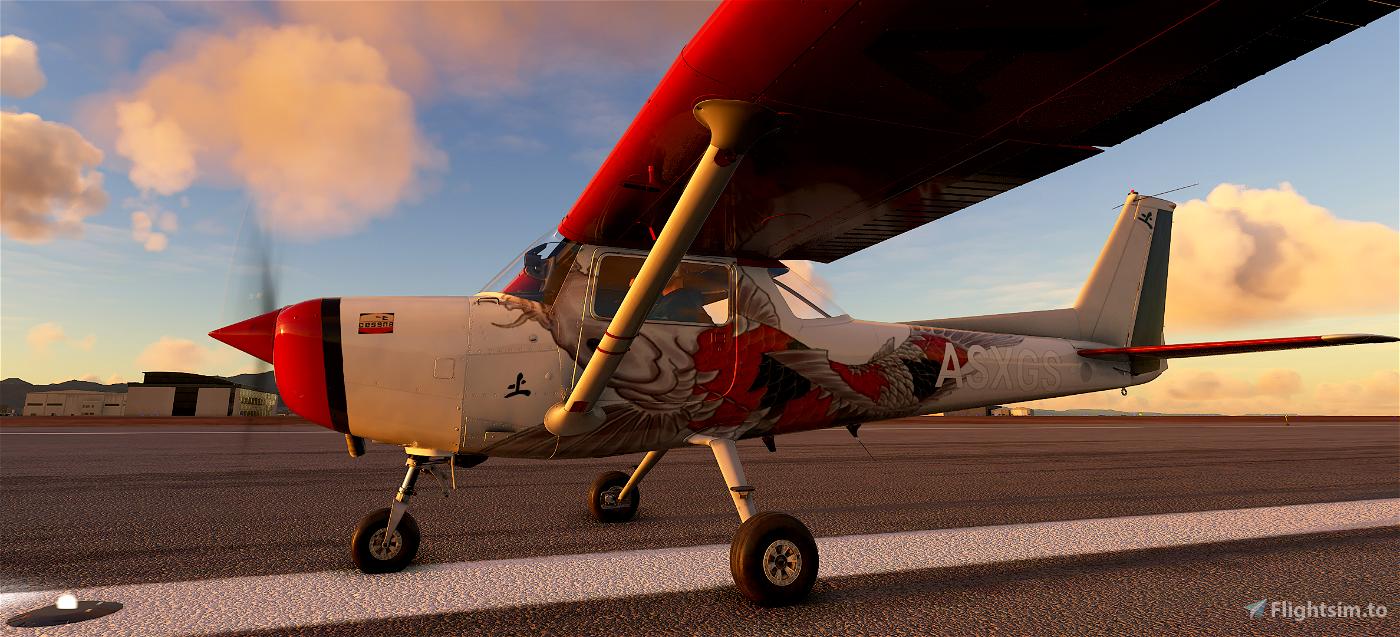 C152 Big Fish Skin Flight Simulator 2020