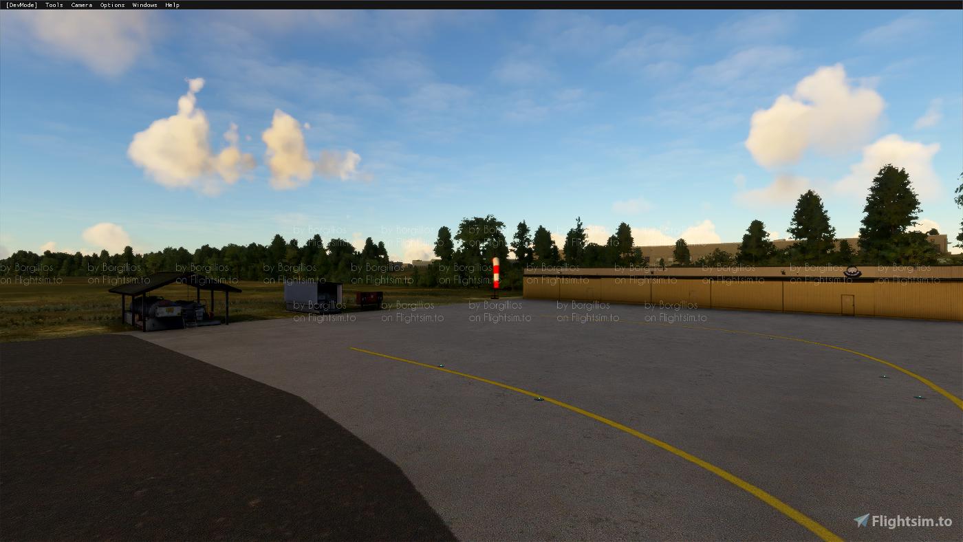 ESGE Viared Image Flight Simulator 2020