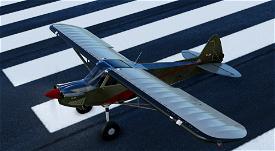 X-Cub Galvanised Bare Steel Image Flight Simulator 2020
