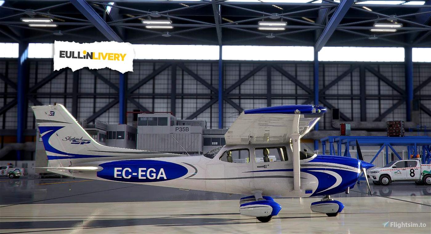 Cessna 172sp as1000