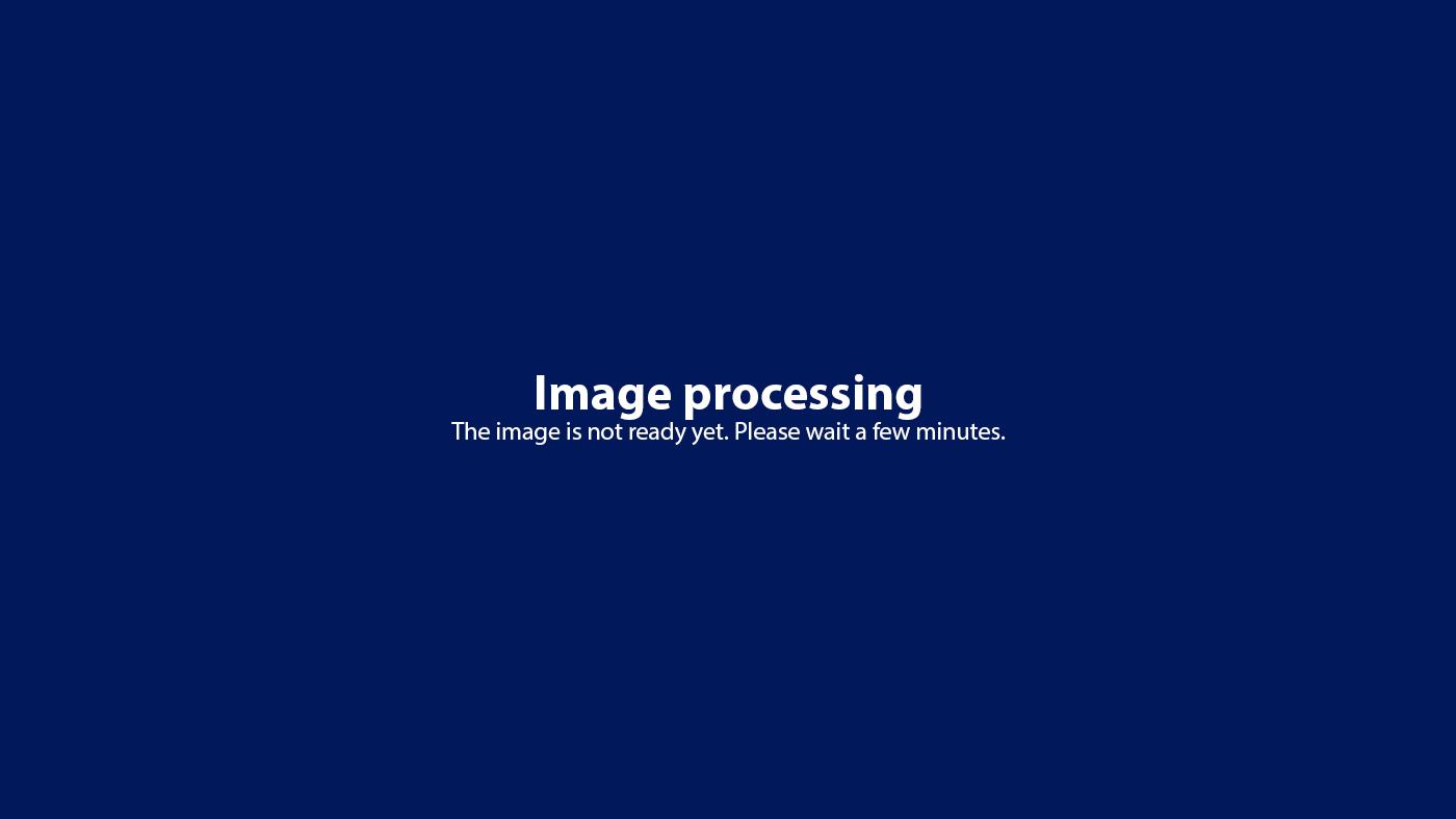 SAS / Scandinavian Airlines - New Style