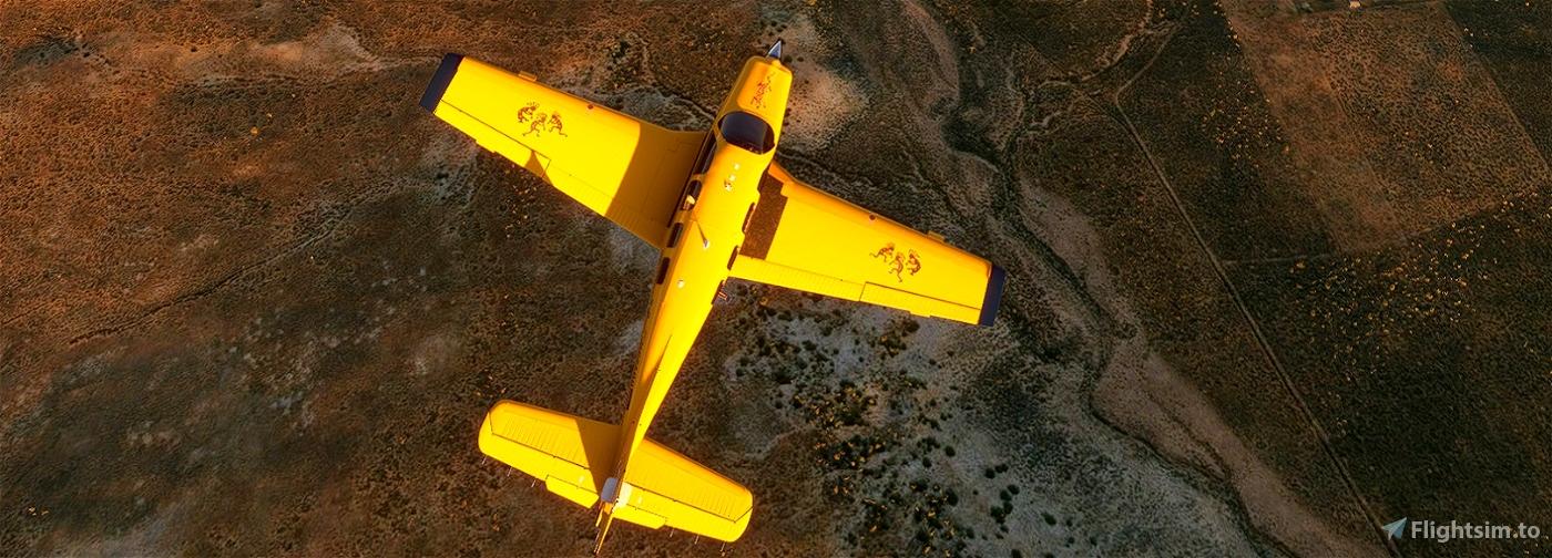 Bonanza G36 N22168 Y-Kokopelli Flight Simulator 2020