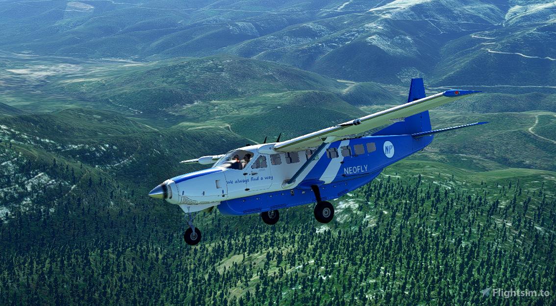 C208B Neofly Flight Simulator 2020