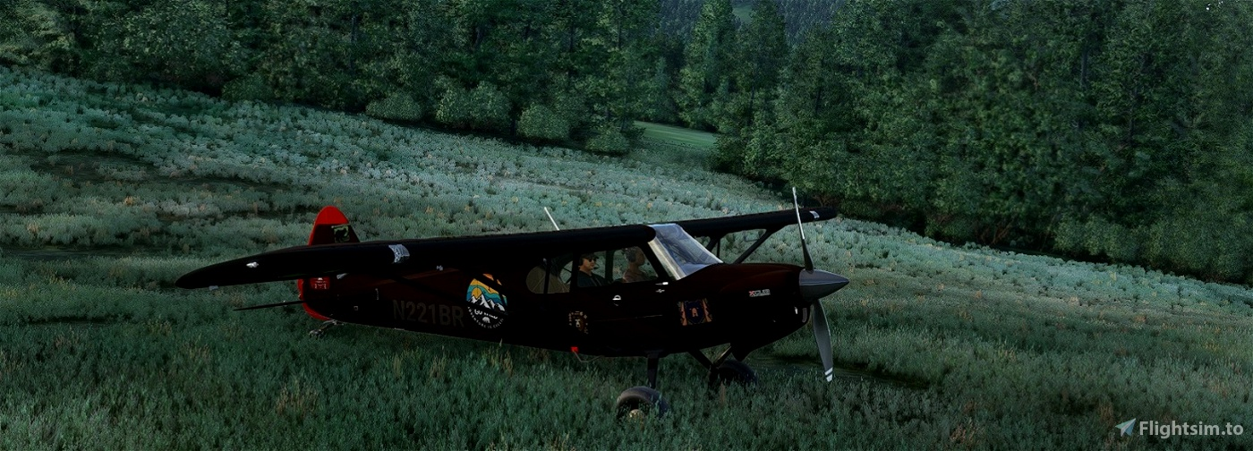 XCub_N221BR-Brown-Bear v2.0 (Compatible 1.12.13.0) Flight Simulator 2020