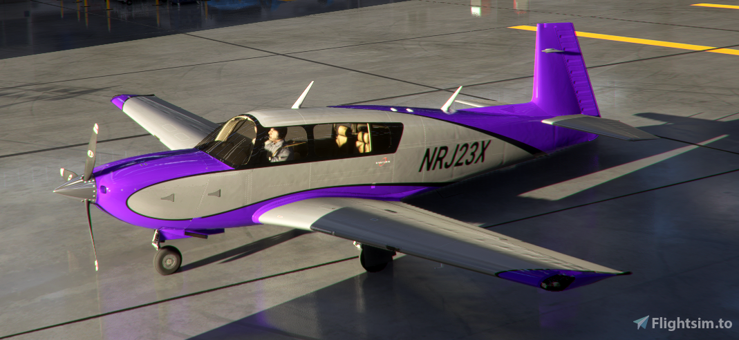 Mooney Livery 9 Colors Style3