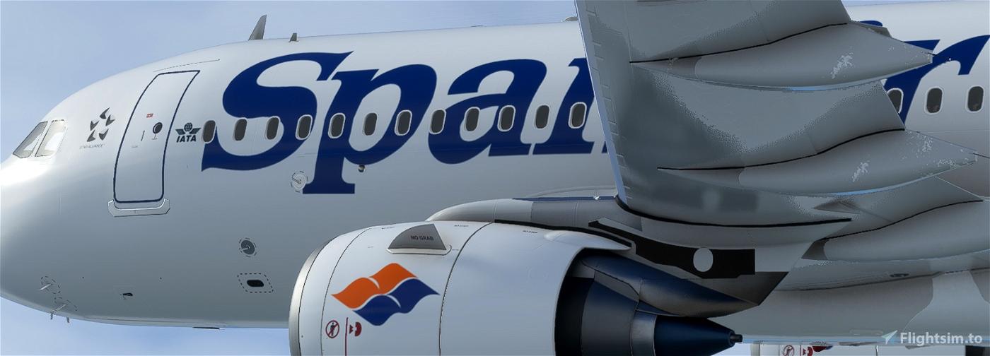 SPANAIR EC-IYG Flight Simulator 2020