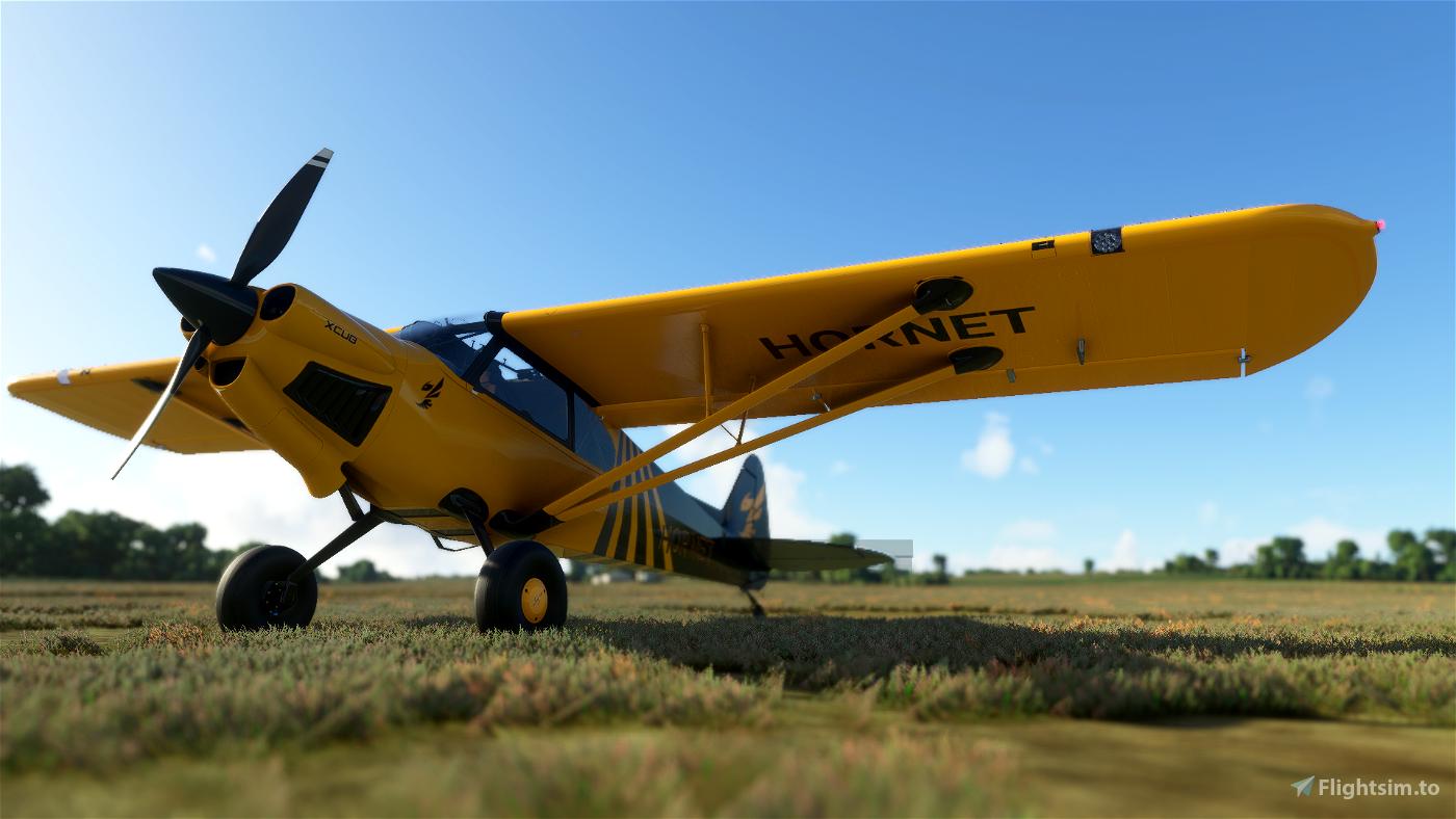 X-Cub Hornet (4K)