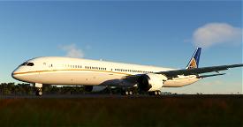 Privajet (united) Image Flight Simulator 2020