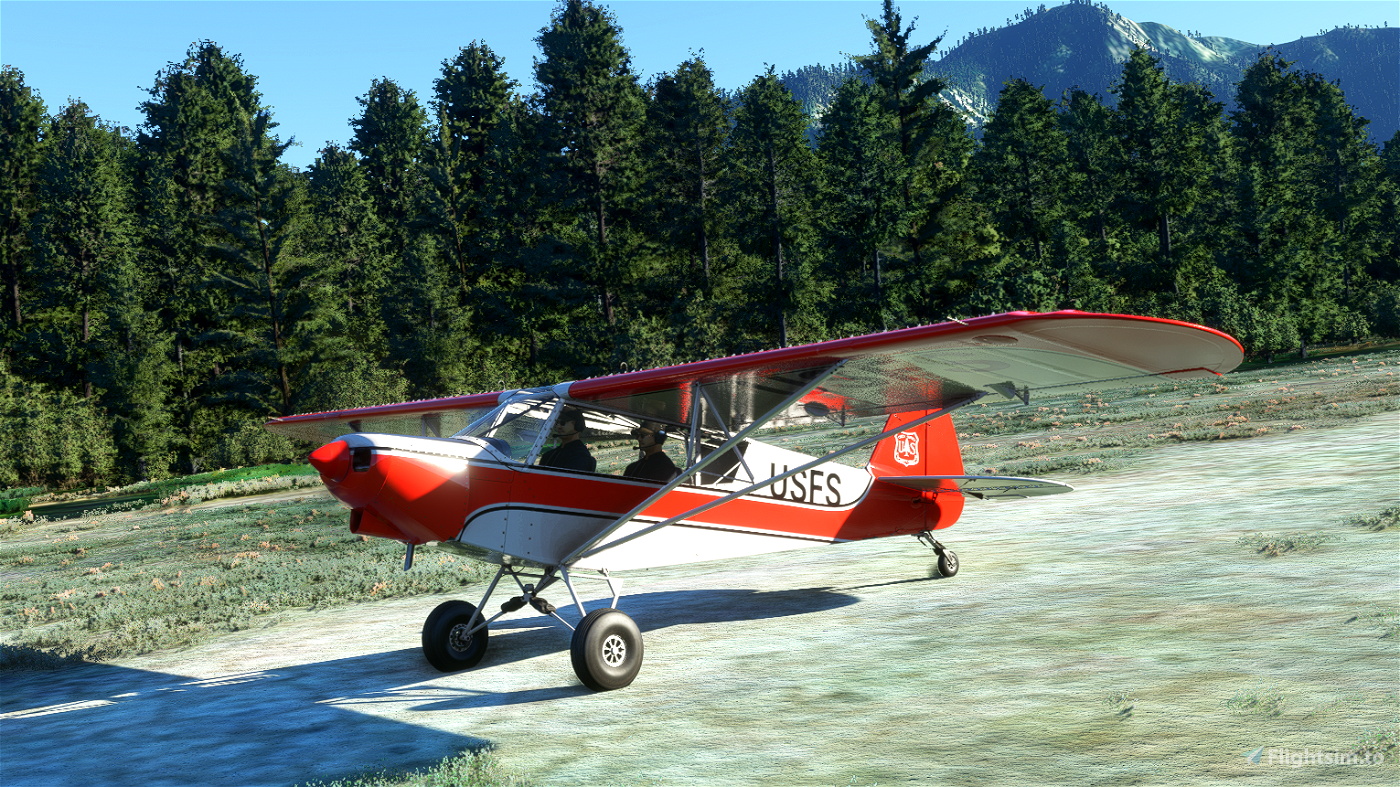 US Forest Service Savage Cub Flight Simulator 2020