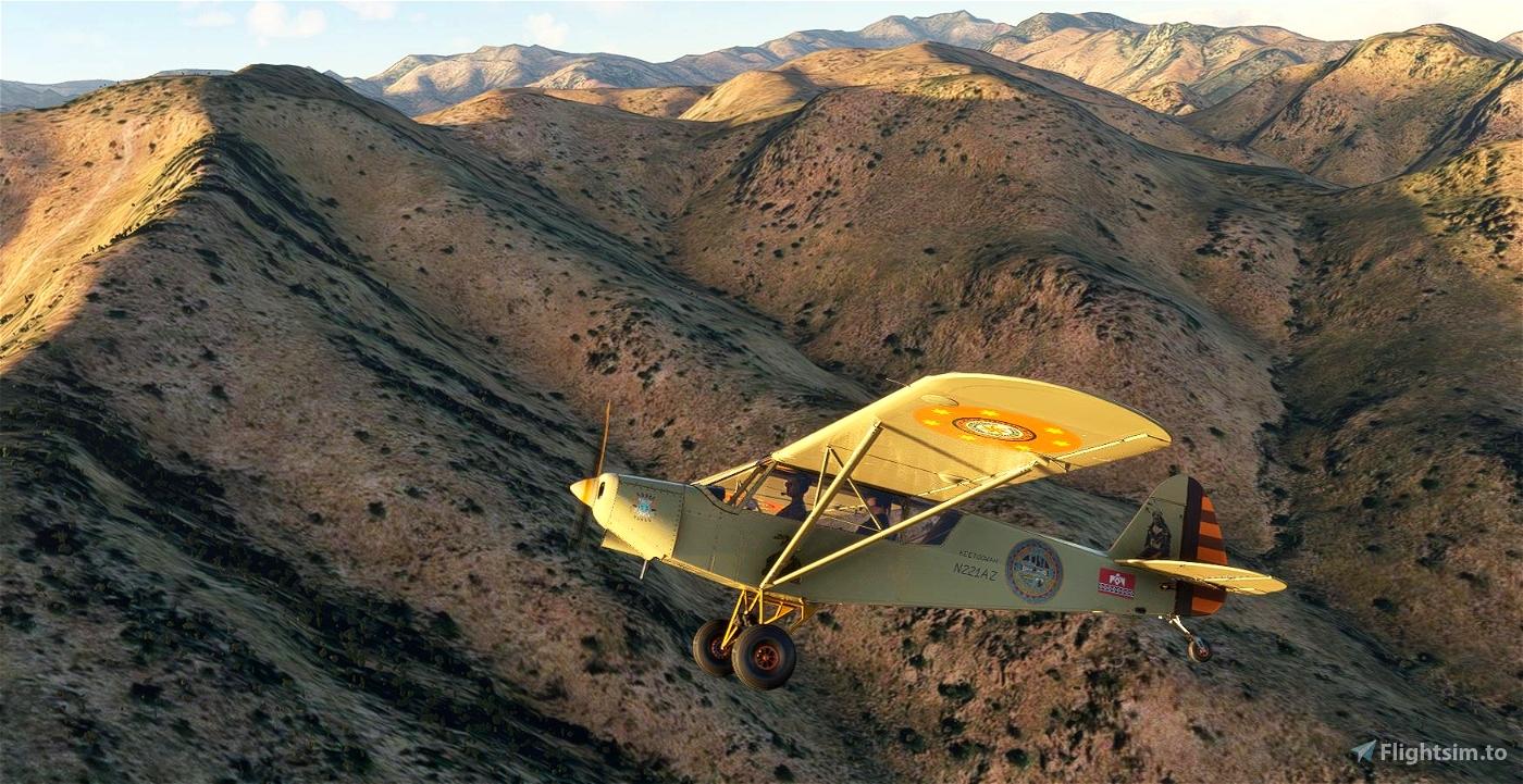 Savage Cub Keetoowah N221AZ v2.0 (compatible 1.12.13.0) Flight Simulator 2020