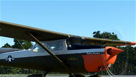 Cessna T-41B Mescalero  U.S. Army Image Flight Simulator 2020