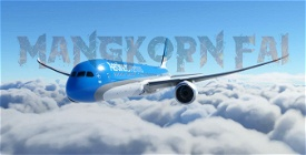 Aerolineas Argentinas 787-10 Image Flight Simulator 2020