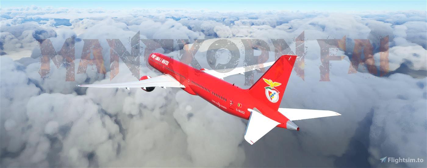 BENFICA 787-10 (fictional)