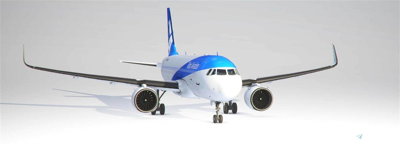Total Aviation Livery  Flight Simulator 2020