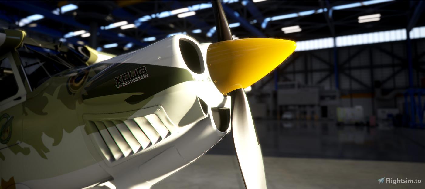 X-Cub PIKE MATT Flight Simulator 2020