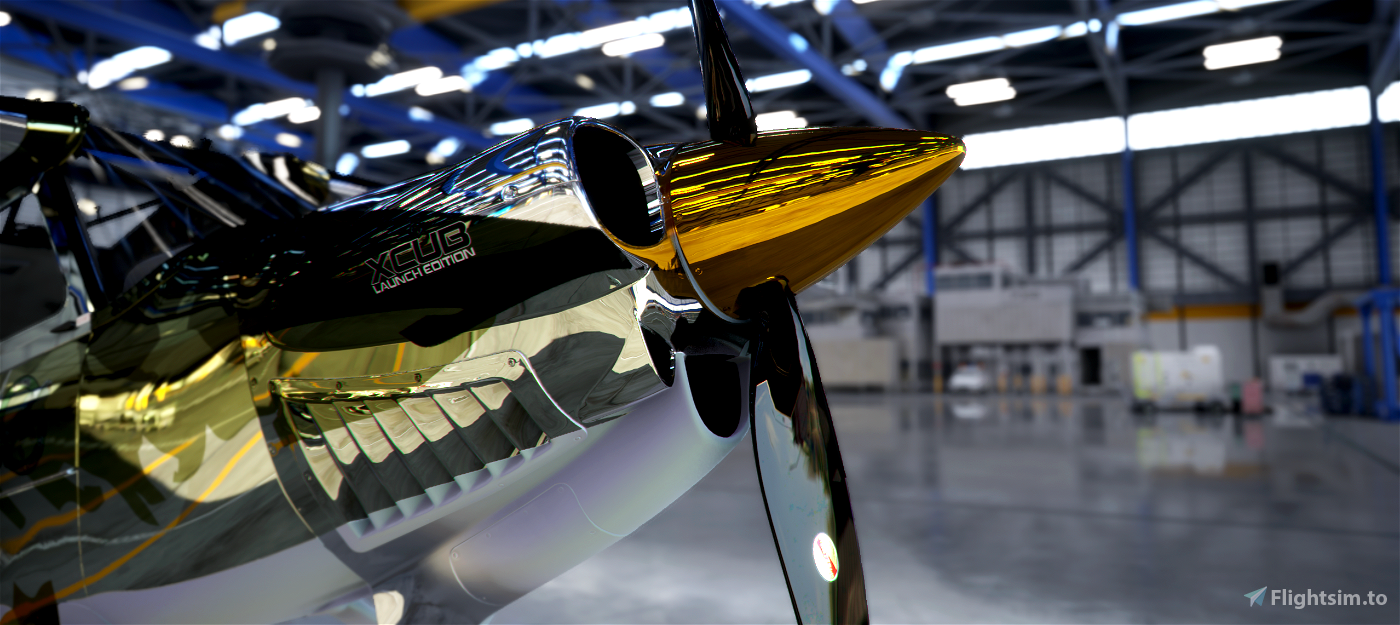 X-Cub PIKE METALIC Flight Simulator 2020