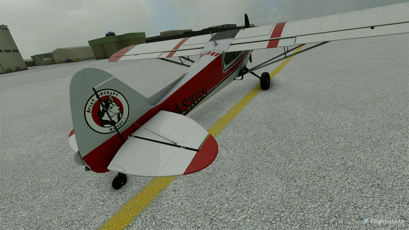 XCub Husky Flight Simulator 2020