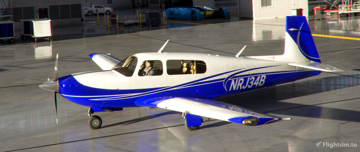Mooney Livery 8 Colors Style 4