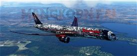 787-10 Death From Above Image Flight Simulator 2020