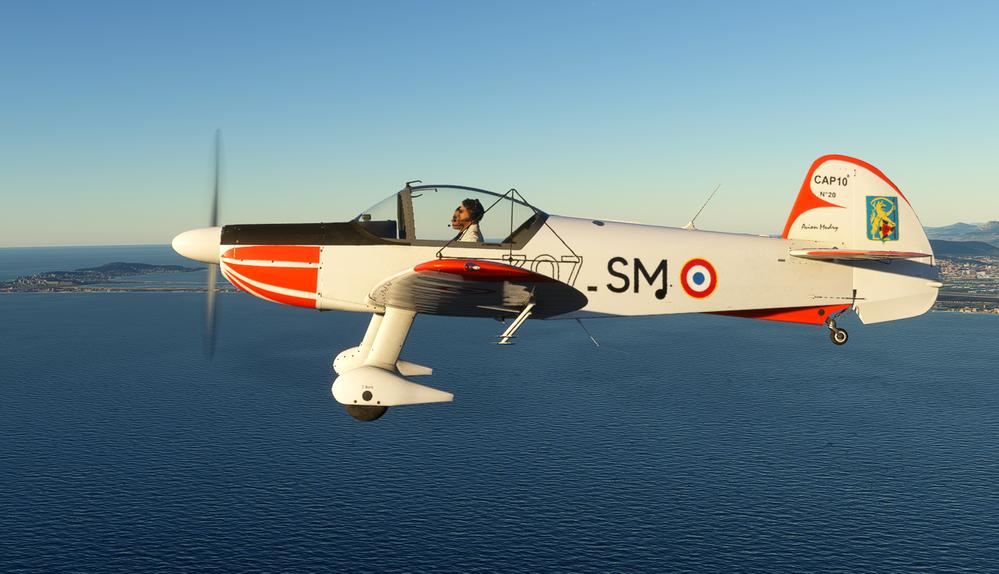 MF_CAP10_EFIPN Flight Simulator 2020