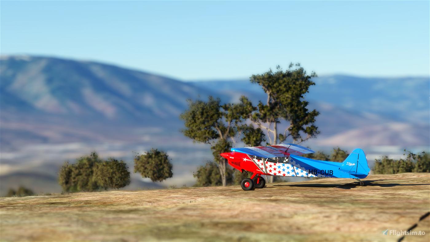 X-Cub Freedom Cub