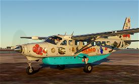 Finding Nemo Express Image Flight Simulator 2020