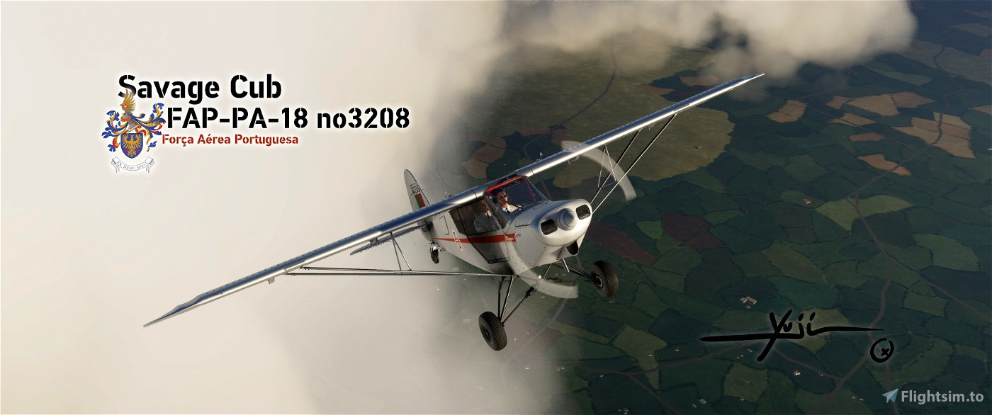 FAP PA-18 no3208 Flight Simulator 2020