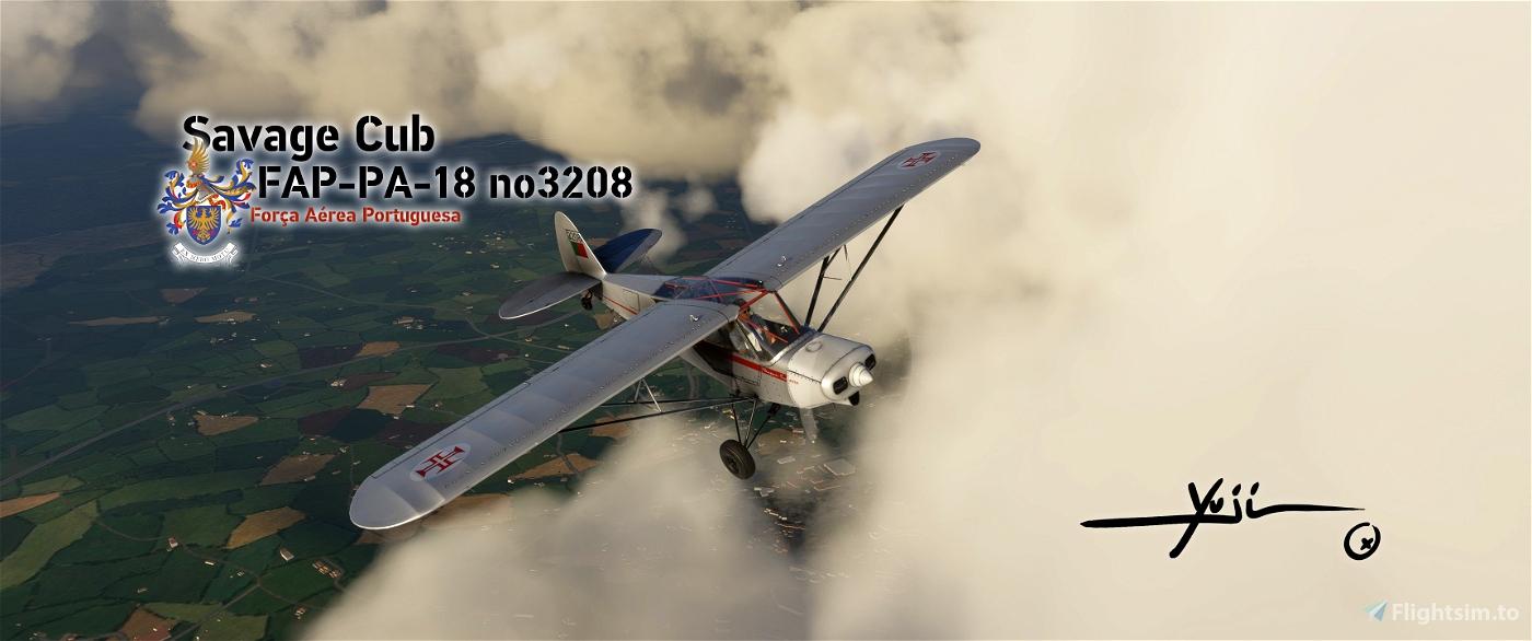 FAP PA-18 no3208