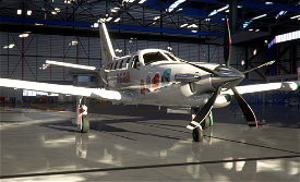 TBM930 Pacman Image Flight Simulator 2020