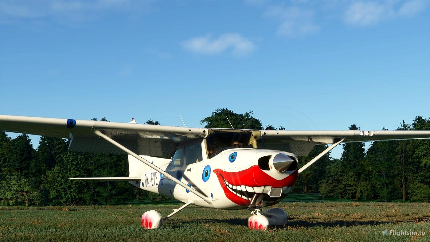 Cessna 172sp  OK-EYE Alpha Aviation (both versions)