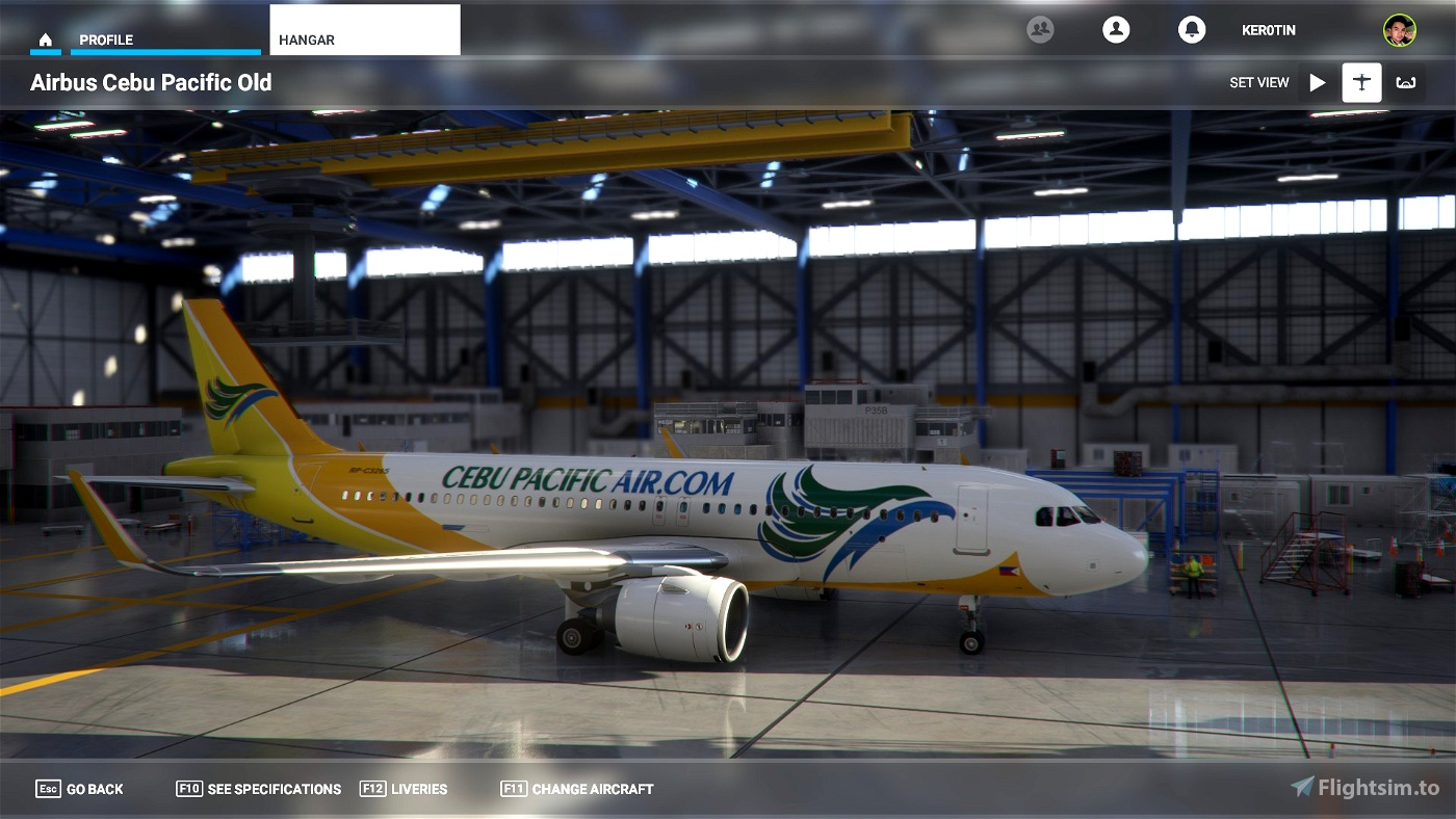 Cebu Pacific Old Livery Flight Simulator 2020