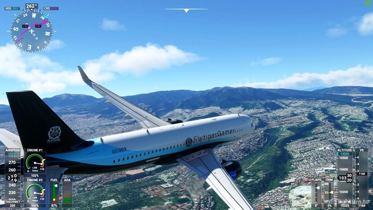 FlyTiger Gamer Liveris Flight Simulator 2020
