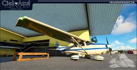 IFA | TI-BGG | Asobo Cessna C172SP Classic (8K) Image Flight Simulator 2020