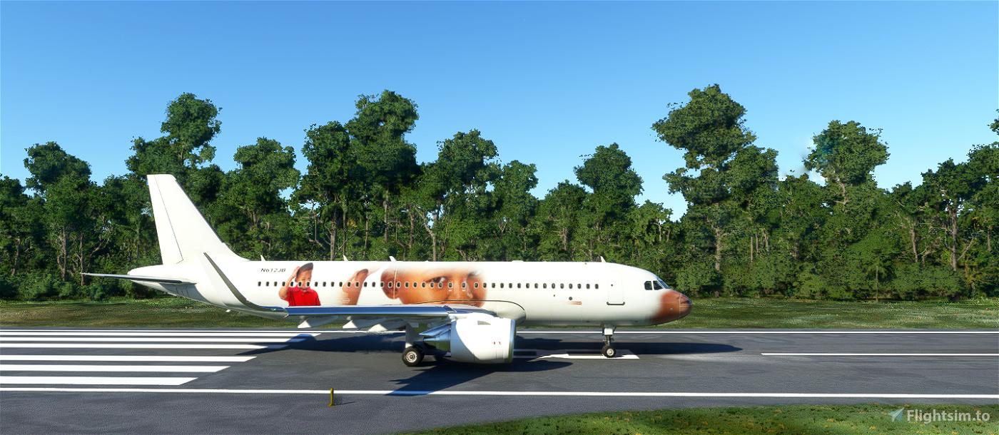 CURSED THINKING KID - MEME LIVERY Flight Simulator 2020