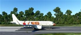 CURSED THINKING KID - MEME LIVERY Image Flight Simulator 2020