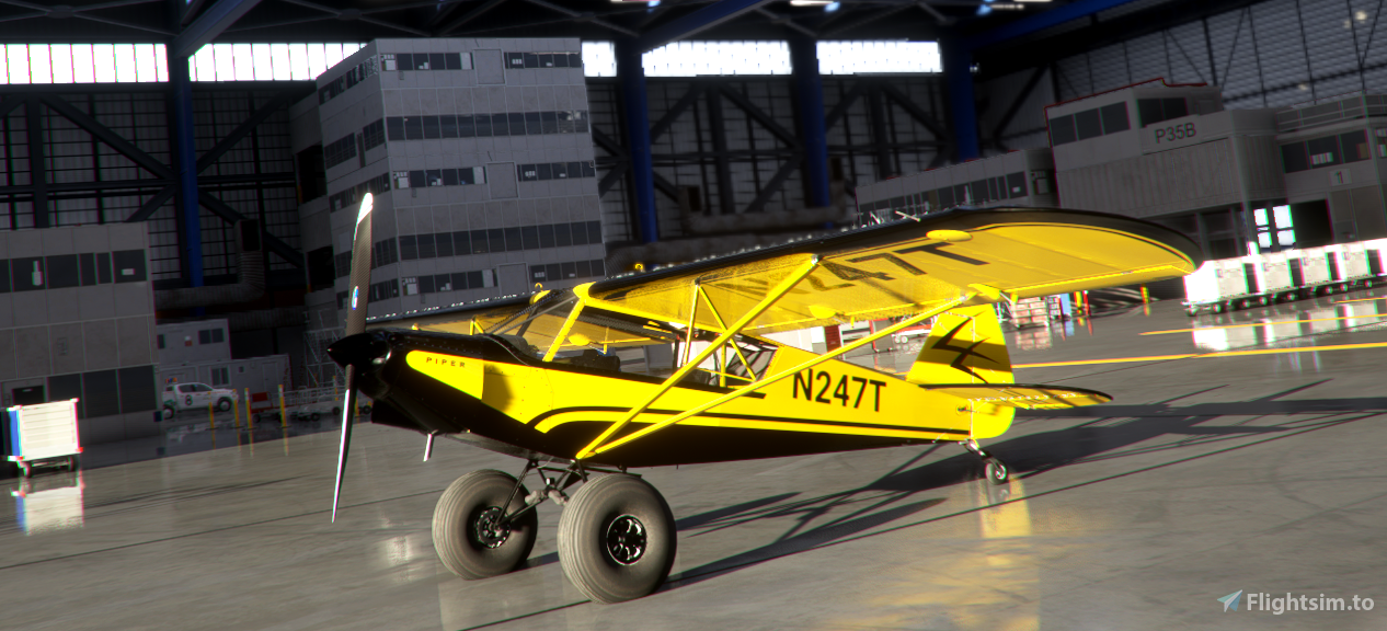 2018 Alaska Airmen's Association Raffle Plane (compatible with GotGravel Mods) Flight Simulator 2020