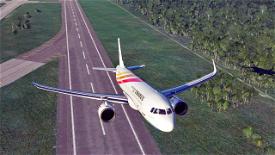 Colorful Guizhou Airlines Image Flight Simulator 2020