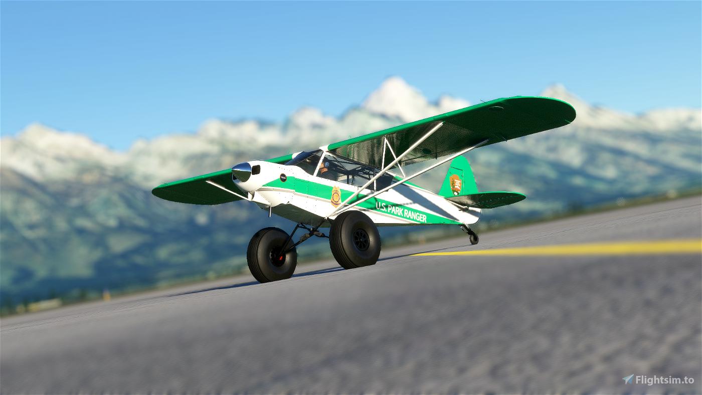 GotGravel's Savage Carbon V1.2 Livery Pack Flight Simulator 2020