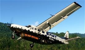 Bush Divers VA -  Cessna 208B Livery Microsoft Flight Simulator