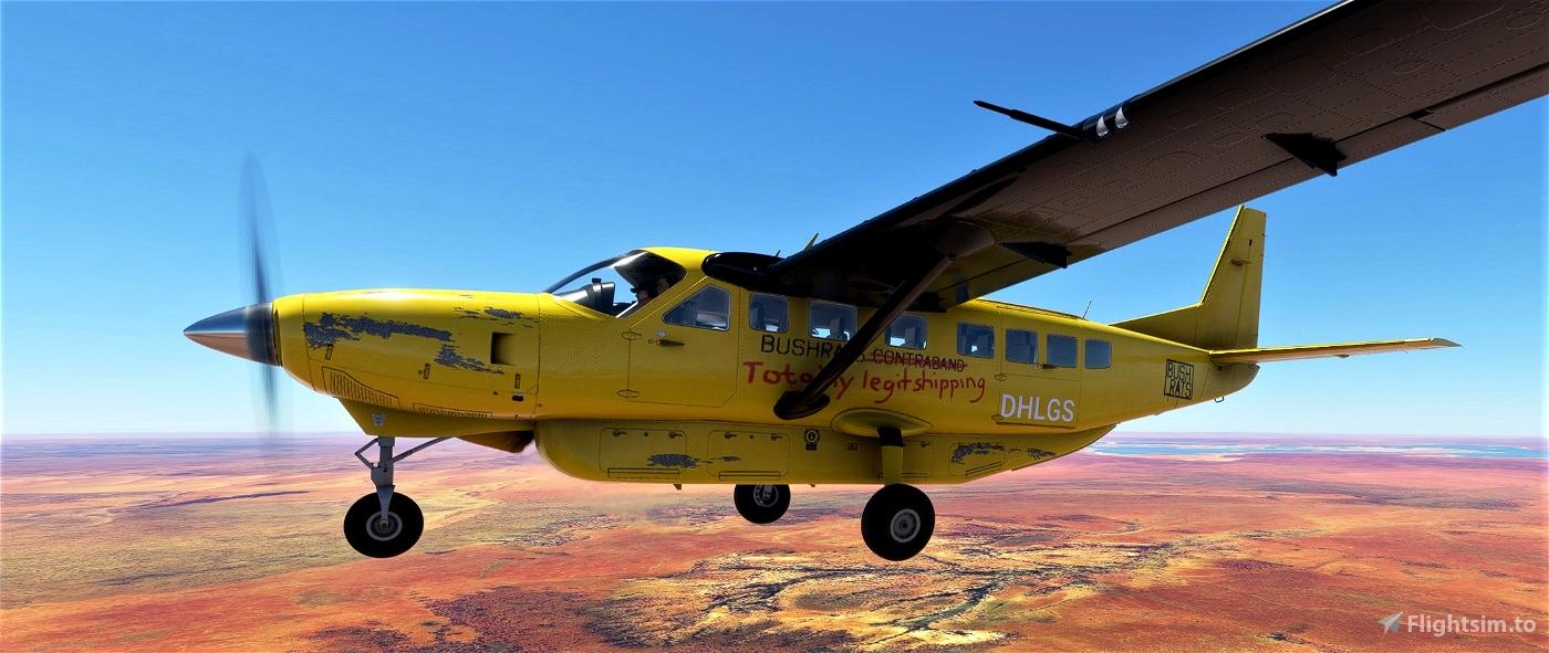 Bushrats Flying Club Liveries