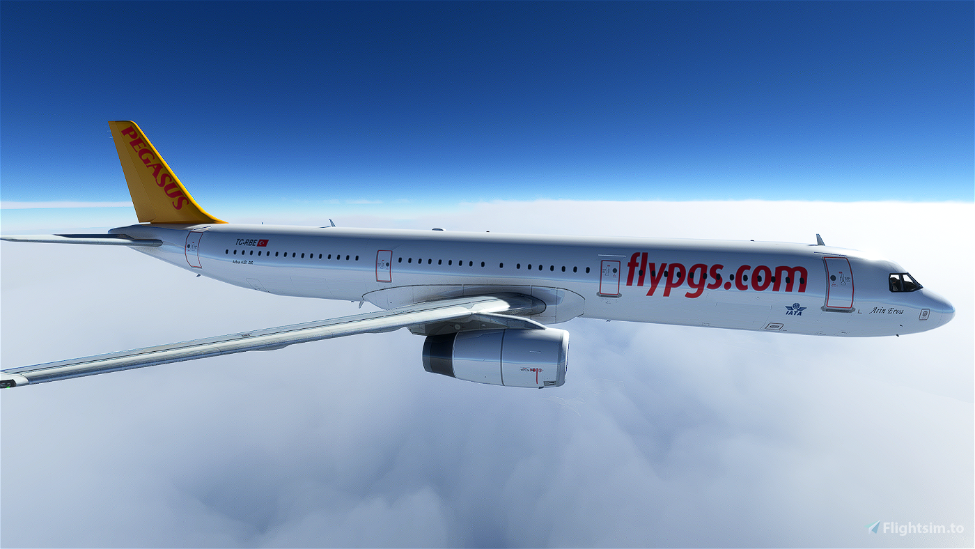 Pegasus Airlines A321 Livery