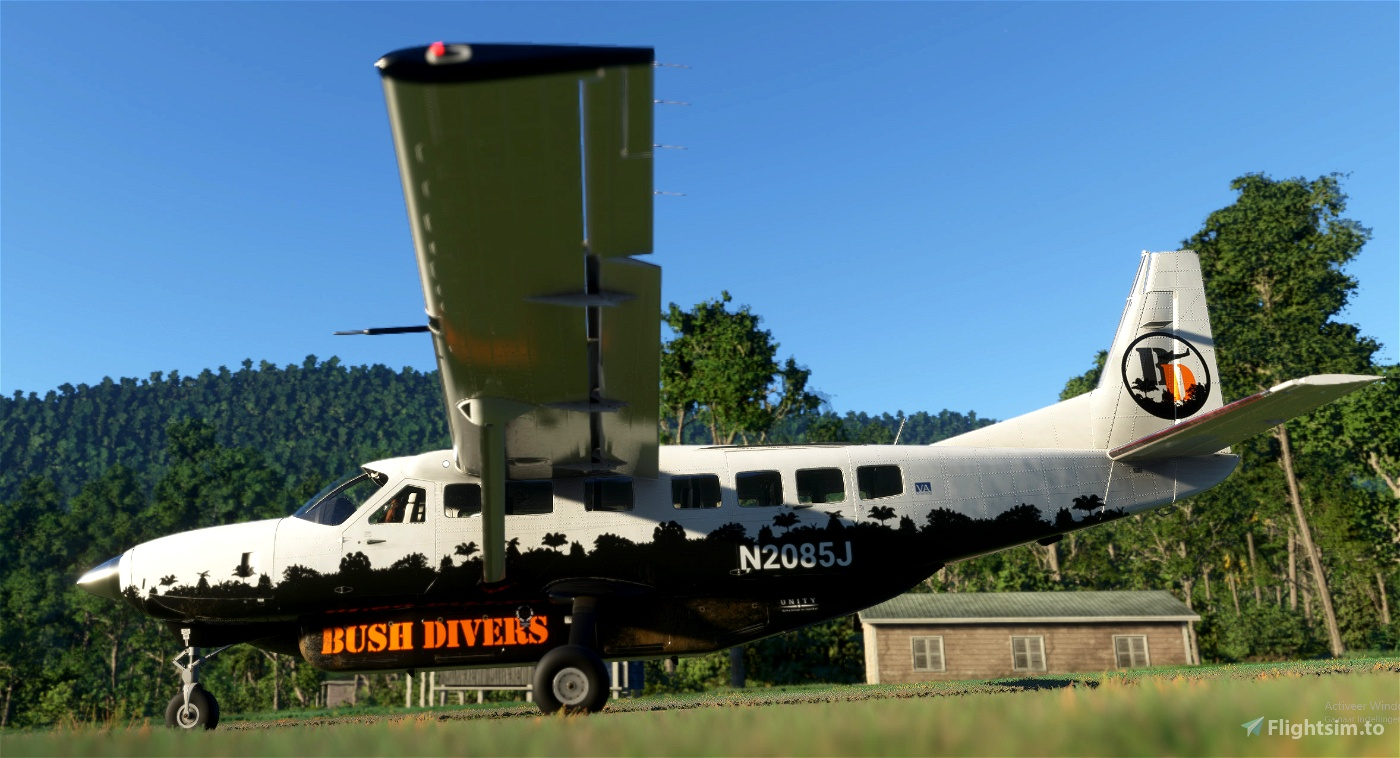 Bush Divers VA -  Cessna 208B Livery