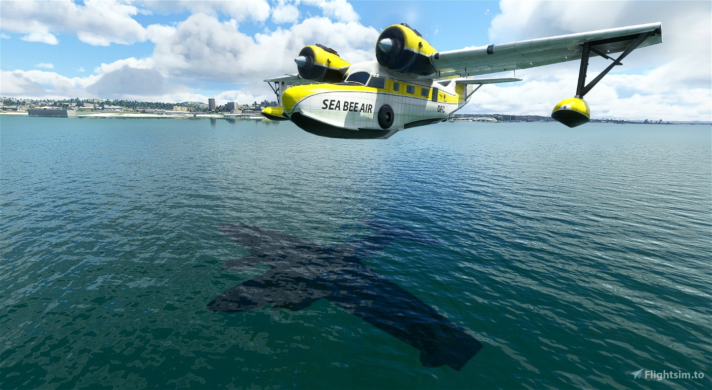 Grumman Goose ZK-DFC Sea Bee Air