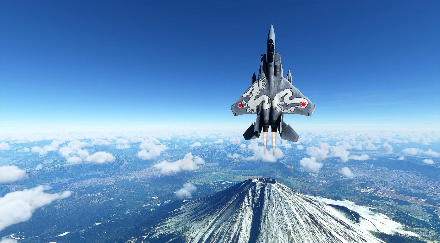 McDonnell Douglas F-15DJ Japan Air Self-Defence Force #963 White Dragon